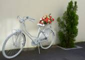 Ladies bicycle with flowers decoration outdoor bike — Stock Photo