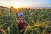 Portrait of a little girl playing in a wheat field — Stock Photo