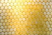 Distorted honeycombs, half filled with honey — Stock Photo