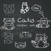 Doodle cats. — Stock Vector