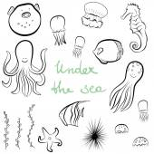 Set of hand drawn sea dwellers. — Stock Vector