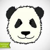 Hand drawn panda's head — Stock Vector