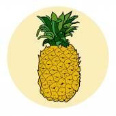 Hand drawn colored pineapple — Stock Vector