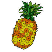 Drawn colored pineapple — Stock Vector