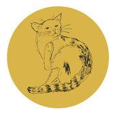 Cat in orange frame — Stock Vector