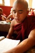 An unidentified Burmese Buddhist novice — Stock Photo