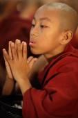 An unidentified Burmese novice praying — Stock Photo