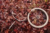 Decomposed bicycle parts — Stock Photo