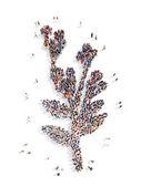 Personas en forma de ecología vegetal. — Foto de Stock