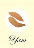 Yam chart vector illustration — Stock Vector