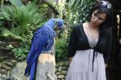 Girl talking to a parrot — Stock Photo