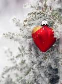 Christmas tree in frost heart — Stock Photo