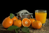 Still life tangerines and juicer — Stock Photo
