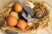 Eggs in a basket. — Stock Photo
