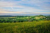 Hill into Beaujolais — Stock Photo