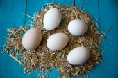 Farm eggs — Stock Photo