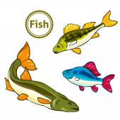 Vector illustration of fishes. — Stock Vector