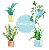 Watercolor vector set of houseplants.Illustration — Stock Vector