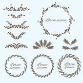 Set flower ornament. Design elements. Vector — Stock Vector