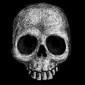 Cráneo dibujado a mano — Vector de stock