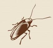 Cockroach — Stock Vector