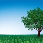Tree on green field — Stock Vector #56961659