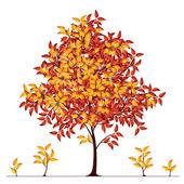 Autumn tree — Stock Vector