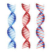 Vector DNA — Stock Vector
