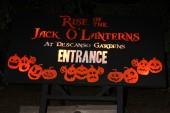 RISE of the Jack O'Lanterns — Stock Photo