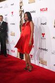 2014 NCLR ALMA Awards Arrivals — Stock Photo