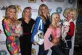 Shanna Olson, Christy Oldham, Juls Bindi, Frenchie, Shelley Michelle — Stock Photo