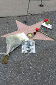 Flowers on Leonard Nimoy's Star on the Hollywood Walk of Fame — Стоковое фото