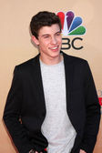 Shawn Mendes — Stock Photo