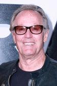 Peter Fonda — Stock Photo