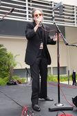 Richard Lewis  at Ringo Starr's Birthday — Stock Photo