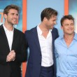 Постер, плакат: Liam Hemsworth Chris Hemsworth Luke Hemsworth