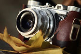 Old camera with autumn leaves — Stock Photo