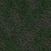 Seamless Grass Background — Stock Photo