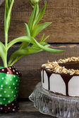 Cake bird's milk with chocolate and coconut — Foto Stock