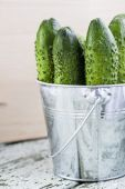 Cucumbers on a wooden background — Stock Photo