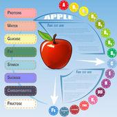 Gezonde plantaardige Infographic met apple — Stockvector