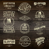 Surf badges logos and labels for any use — Stock Vector