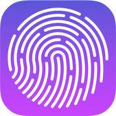 ID app icon. Fingerprint — Stock Vector