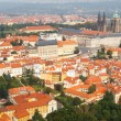 Views over Prague from the height of Petrin Hill. — Stock Photo #55333381