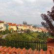 View of Prague Castle from Petrin Hill. — Stock Photo #55828489