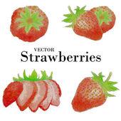Watercolor strawberries set — Stock Vector