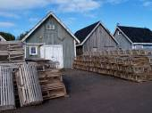 Fishing shacks with Lobster Traps — Stock Photo