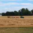 Tractor and baler working in a field of freshly cut wheat straw piled in rows ready to bale. — Stock Photo #55459685