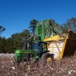 A cotton picker is dumping the load into a boll buggy. — Stock Photo #55739695