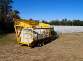 Loaded boll buggy heading toward the module builder to dump  the load with a cotton field in the background. — Stock Photo